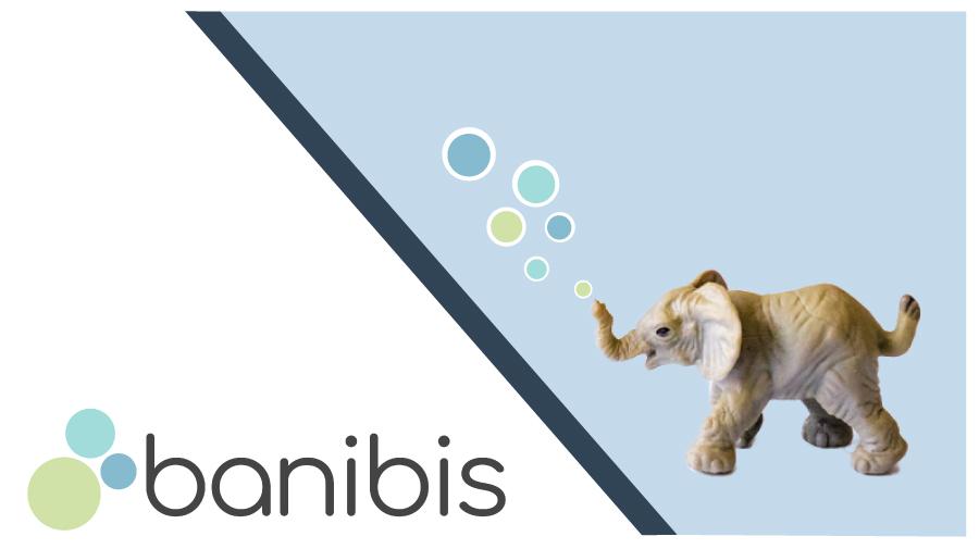 Das banibis Update